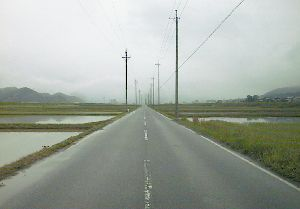 上中~小浜の道
