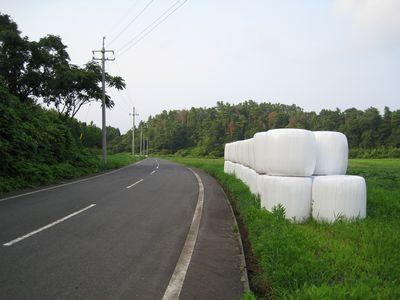 気高広域農道