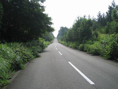 中部広域農道