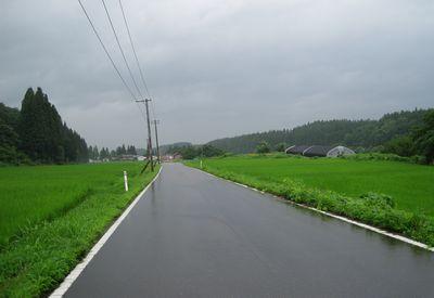 水芭蕉の丘広域農道